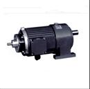 通电减速电机 100W