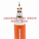 柔性无机矿物绝缘防火电缆BTLY-4X25+1X16
