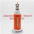 矿物质防火电缆NG-A(BTLY)-3X25+2X16