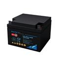 进口法国路盛蓄电池12LPA24最新