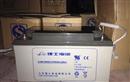 理士蓄电池DJM1265S 12V65AH
