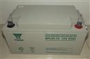 汤浅蓄电池NPL65-12 12v65ah 免维护铅酸蓄电池 原装正品