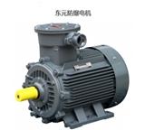 防爆电机 世界三大电机品牌之一东元电机 AEBY