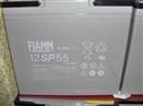 非凡蓄电池12V55AH