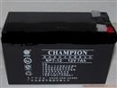 冠军蓄电池12V7AH