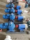 供应3RP3/0.5凸轮转子泵  无极调速保温乳胶泵 卫生级糖浆泵