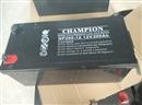 冠军蓄电池NP200-12