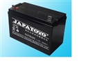 JAPATOYO蓄电池12V100AH价低