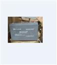中达电通蓄电池12V100AH厂销现货