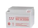 普瑞顿蓄电池12V24AH厂家直销
