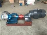 供应不锈钢高粘度泵 NYP320不锈钢转子泵 保温转子泵