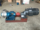 泊头厂家供应高粘度泵 脉冲小 转子泵NYP1670-0.5 DN200mm
