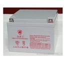 金武士蓄电池12V24AH厂家直销