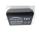 乐珀尔蓄电池12V100AH厂销