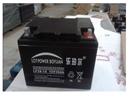 乐珀尔蓄电池12V38AH厂销