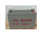 乐珀尔蓄电池12V24AH厂销