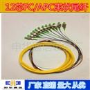 12芯束状尾纤FC/APC