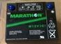 美国GNB蓄电池M12V30T后背应急电源蓄电池12V30AH代理**