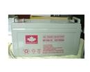 山顿蓄电池NP100-12厂销