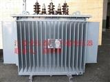 电力配电变压器SH15-100KVA油浸式变压器  10KV/.04 低价厂家直销