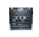 德国CTD蓄电池6GFM24后备电源机房专用12V24AH现货