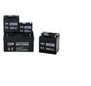 爱克赛蓄电池NP65-12美国进口蓄电池12V65AH现货