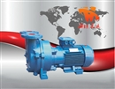 真空泵 水环式真空泵SKA型