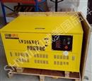 30KW汽油发电机