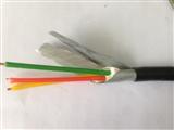 ZR-RVVP系列 阻燃信号屏蔽电缆(镀锡导体镀锡屏蔽)维尔特牌