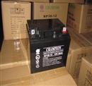 UPS专用蓄电池    冠军蓄电池NP38-12 乐乐**