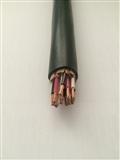 安徽天康仪表信号电缆