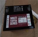 12v大力神蓄电池免维护铅酸大力神蓄电池MPS12-65