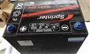 美国GNB蓄电池S12V300现货直销