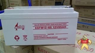 奥科蓄电池12V6AH 6GFM12/65