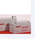 现货批发柏克蓄电池6FM65免维护铅酸蓄电池12V65AH最新价格