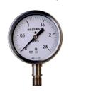 耐腐耐高温压力表