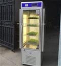 小麦人工气候箱