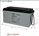 复华(保护神)蓄电池6-GFM-65S\R UPS\EPS直流屏质保三年