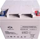 双登蓄电池6-GFM-3812V38AH铅酸免维护电池应急灯直流屏登专用