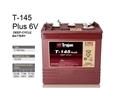 美国邱健蓄电池T-145-适用于电动升降平台的TROJAN电池