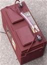 美国Trojan邱健蓄电池L16H-AC 高尔夫球车蓄电池