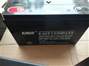 冠军蓄电池12V100AH  UPS电源冠军12V100AH蓄电池 诚信**免运费