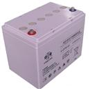 双登蓄电池12V65AH 双登6-GFM-65 蓄电池**原装正品质保三年