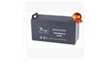 广州捷虎蓄电池6GFM100捷虎蓄电池NP100-12产品保障提供安装技术