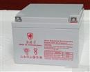 金武士蓄电池PW24-12-YA广东厂家直销金武士蓄电池12v24AH参数