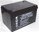 冠军蓄电池,冠军蓄电池NP12-12华北营销中心