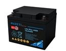 法国路盛蓄电池12LPA50免维护蓄电池12v50AH路盛电池经销商包邮