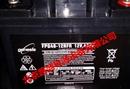 霍克蓄电池FPG40-12RFR 12V,40AH胶体技术