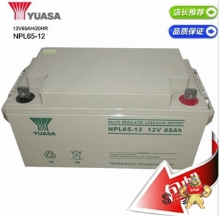 汤浅蓄电池NPL65-12 12V65Ah 品质保证-店长推荐