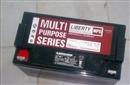 大力神蓄电池 12V158AH 西恩迪蓄电池 C-D12-158ALBT 美国大力神